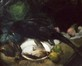 Le faisan noir