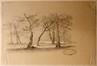 Les arbres<br>Verboeckhoven, Eugène