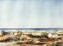 Mer du Nord (Noordzee)<br>Contempre, Paul