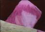 Contre-plongée en rose