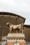 Les deux taureaux - Abattoirs d'Anderlecht<br>Bonheur, Isidore Jules