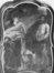 Saint Jean Baptiste et Saint Jean l'Evangeliste<br>Van Dyck,  Antoon