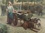La vendeuse de cerises<br>Van Ginst,