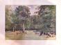 La pelouse des Anglais au Bois de la Cambre<br>Hoeterickx, Émile