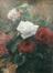 Roses<br>Devis, Pierre