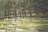 La mare aux grenouilles au printemps<br>Javaux, Ginette